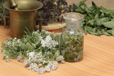 10255456-le-erbe-medicinali--achillea-millefolium-freschi-secchi-timo-selvatico-e-menta